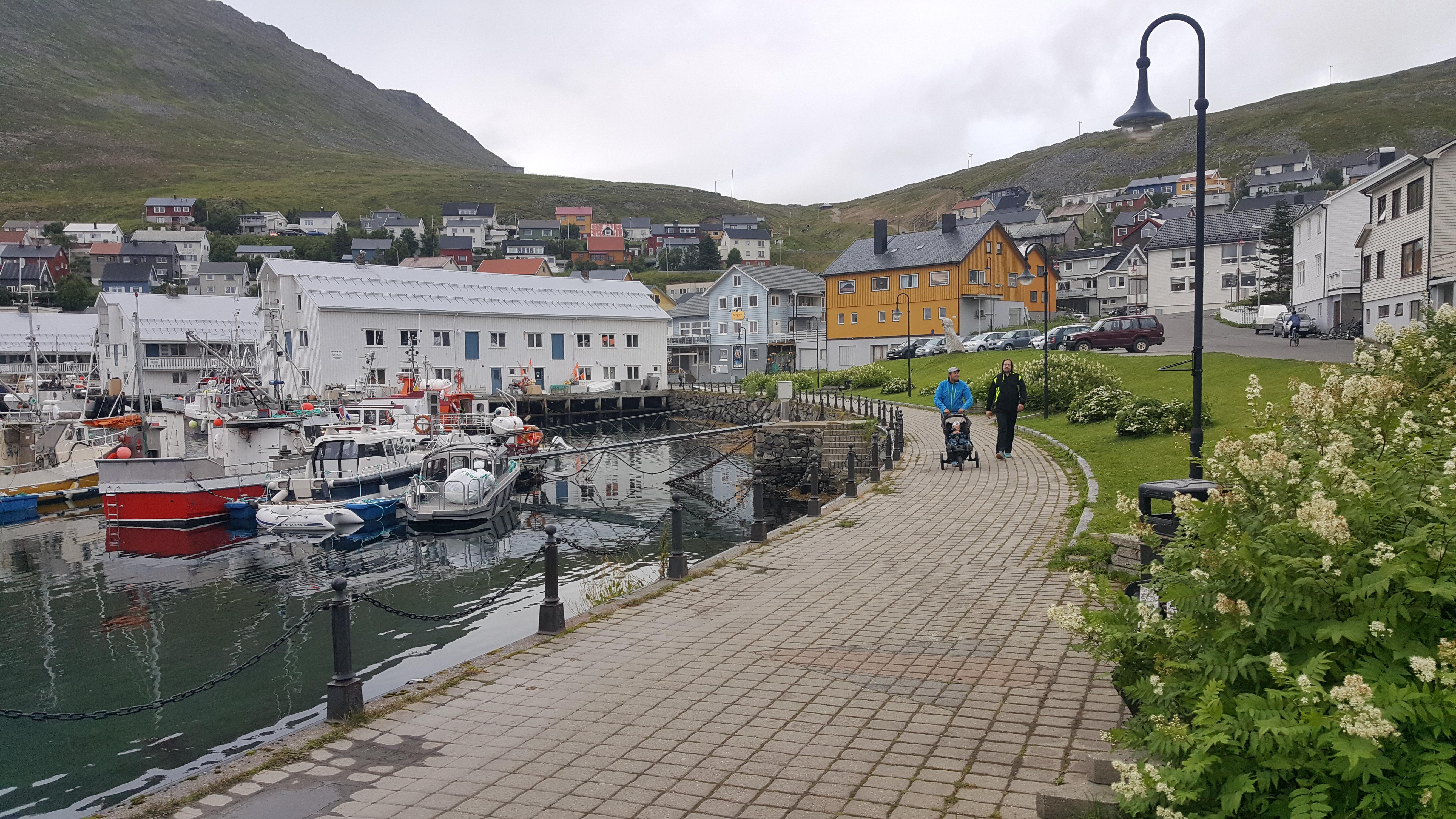 норвегия киркенес сани фото приготовить пышный омлет