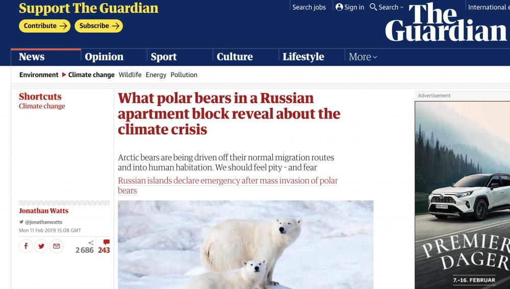 4d5c898a5fa Gli orsi polari che passeggiano a Novaya Zemlya