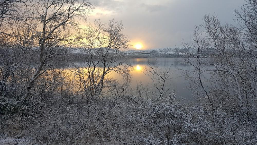 [Image: cold_frost_winter.jpg?itok=gX9OHxA4]