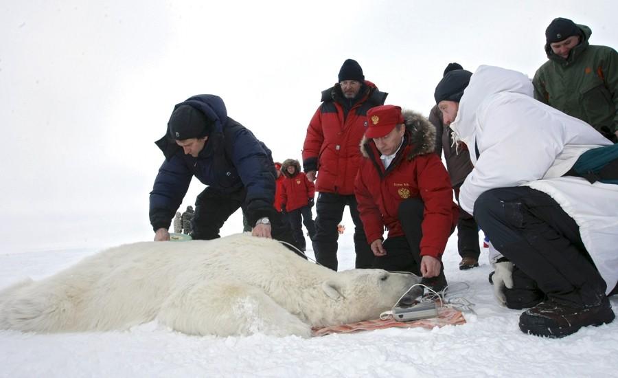 Развитие арктического региона - приоритетная политика Путина