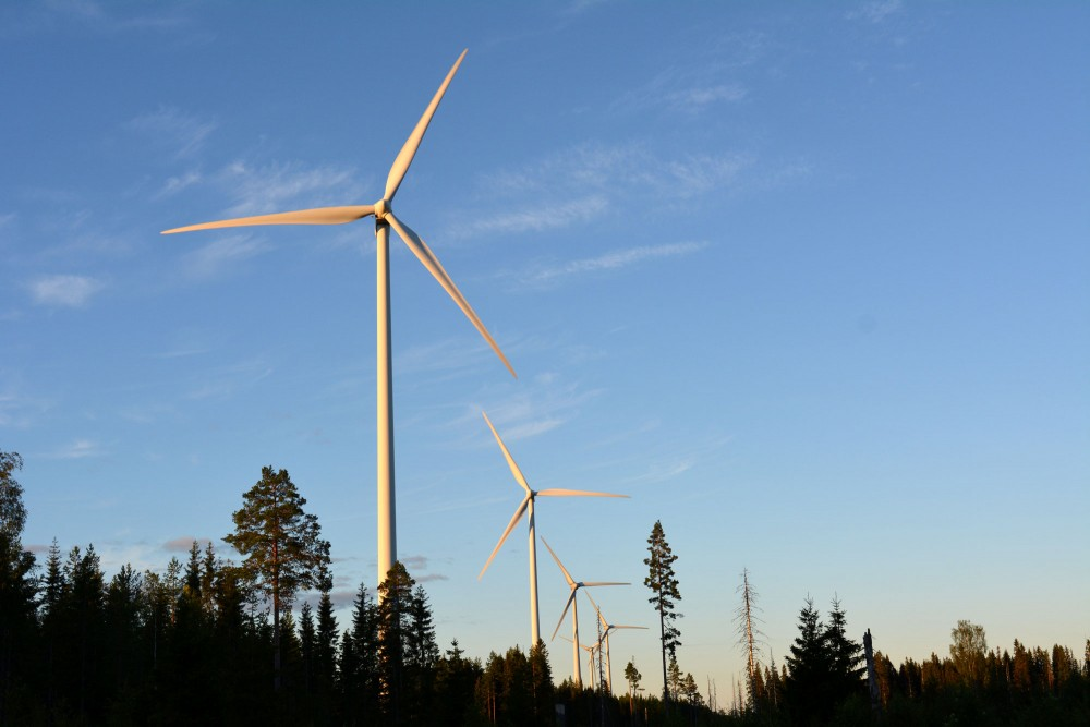 Investors bring life to biggest wind project in northern